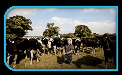 Brooklet Farm Donald Tyson Farm Grid Left Ae0a1e3554826ba30ae27db4229305d3 1